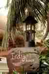indigo beach wedding_3