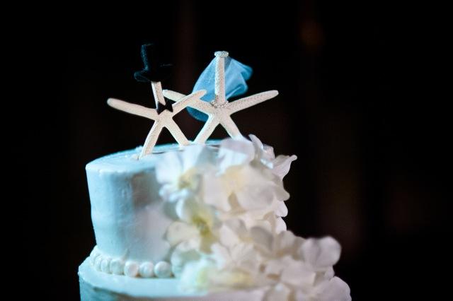 Weddings-in-playa-blue-venado-wedding